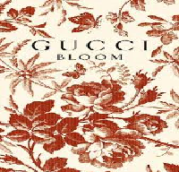 Analytical Report of GUCCI Organization