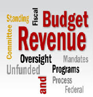 State Funded Programs and Budget Analysis Paper