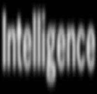The Process of Creating National Intelligence Estimates
