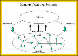 The Impact of Complex Adaptive Systems Discussion