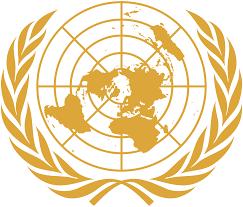 International Organization Making a Difference