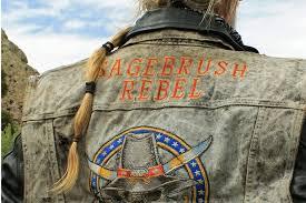 Using Biased Sources: The Sagebrush Rebellion