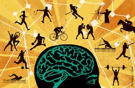 Sports Psychology: Violence in Sports