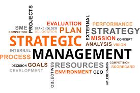 Strategic Management Suitability