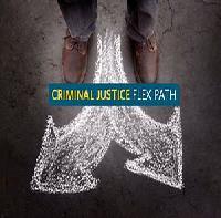 Criminal Justice Developmental Pathways