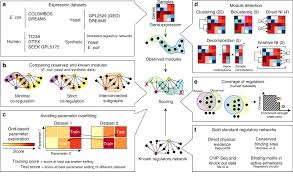 Evaluation of Genetic Data and Dataset