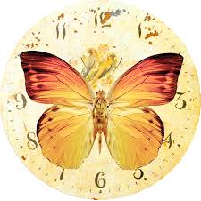 Time of Butterflies Reading Activity