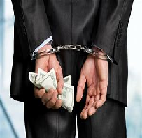 White Collar Crime Assignment Paper