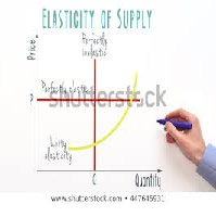 The Elasticity of Supply Advanced Analysis