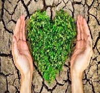 Charities Impact on Environment Protection