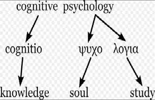 Cognitive Psychology Literature Review