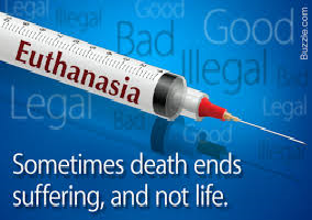 Cons and Pros of Euthanasia Discussion