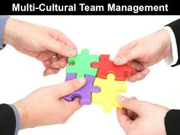 Managing Multicultural Team Article Summary