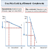 Public Economics and the Price Elasticity of Demand