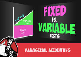Variable and Fixed Costs Annual Report