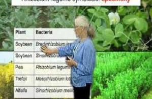 Case Study Fruit Tree Nursery FTN