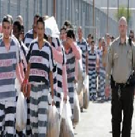 Recent Trends in Privatized Corrections