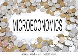 Microeconomics Manual for a business