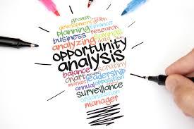 Opportunity Analysis Plan