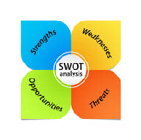 Best buy swot essays