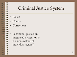 Actors in criminal justice system