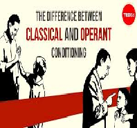 Classical and Operand Conditioning Scenario