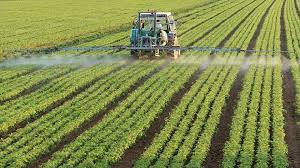 Relation of chemical warfare and agricultural insecticides