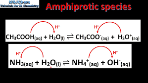 Chemistry Amphiprotic Species Research Paper