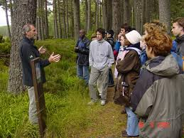 Effective environmental education