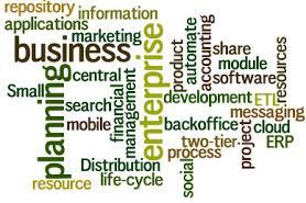 Enterprise System Recommendation Essay Paper