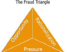 Functional Business Systems and Corporate Fraud