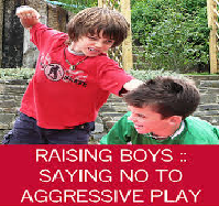 Parents on Raising Boys and Aggression