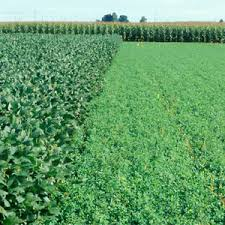Sustaining Our Agricultural Resources