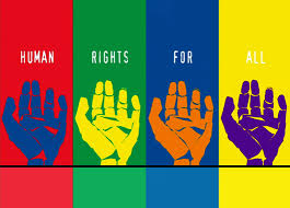 Human Rights Case Study