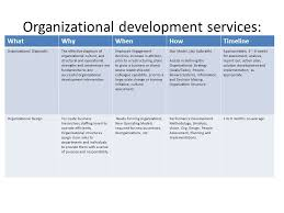 Organizational Assessment and Implementation Paper
