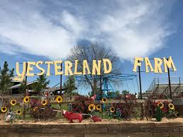Yesterland