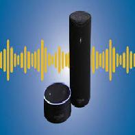 Amazon Echo Industry and Company Data