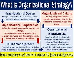 Business Strategy and the Organizational Design