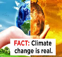 Climate Change IS REAL Essay Paper