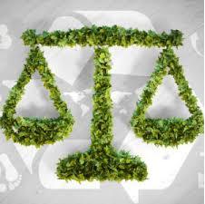 Environmental Impact on Understanding of Gender Roles