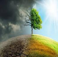 Global Warming Persuasive Research Paper