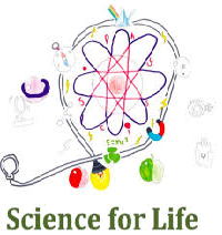 How Science and Life Work Together