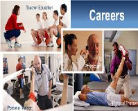 Kinesiology Teaching and Coaching Careers Coursework