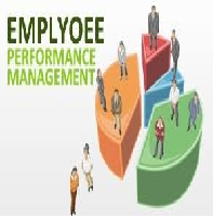 Performance Management System Research Paper