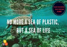 Plastic Pollution of the Mediterranean Sea