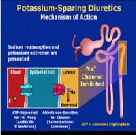Potassium Sparing Diuretic Essay Paper
