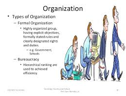 Society and Culture of the Organization