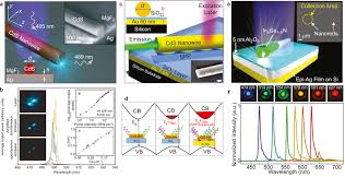 Surface Plasmon Lasers on Nanophotonics