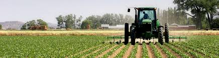 Agricultural insurance programs and income protection contracts