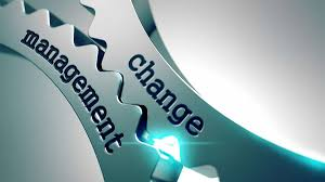 Change management Journal and Essay